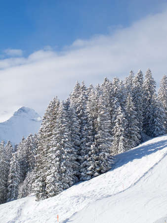 Winter in swiss alps (Elm, Glarus, Switzerland) photo