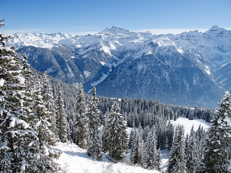 Typical swiss winter season landscape. January 2011, Switzerland. photo