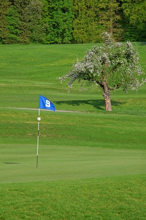 9th flag on the golf course Stock Photo - 9897625