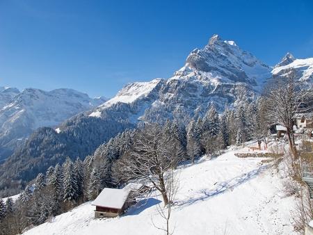 Typical swiss winter season landscape. January 2011, Switzerland. Stock Photo - 9897727