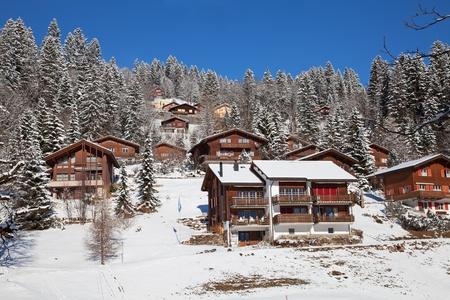 Typical swiss winter season landscape. January 2011, Switzerland. Stock Photo - 9897648