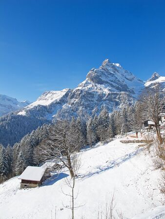 Winter in the swiss alps, Switzerland Stock Photo - 10263980
