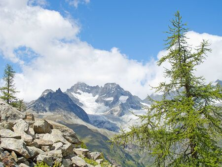 Summer alpine landscape near Zermatt, Switzerland photo