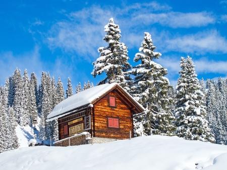 Winter in the swiss alps, Switzerland Stock Photo - 10543559