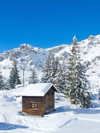 Typical swiss winter season landscape. January 2011, Switzerland. Stock Photo - 11229887
