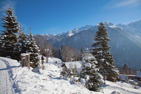Typical swiss winter season landscape. January 2011, Switzerland. Stock Photo - 11235609