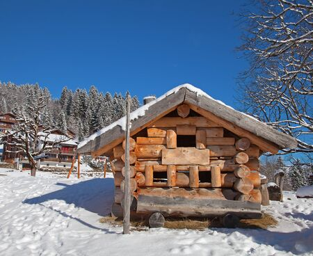 Typical swiss winter season landscape. January 2011, Switzerland. Stock Photo - 11229886