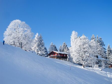 Winter in the swiss alps, Switzerland Stock Photo - 11229888
