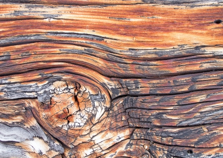 knothole: Tarred wooden structure close up Stock Photo