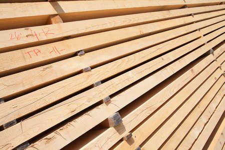 Stack of new wooden studs at the lumber yard photo