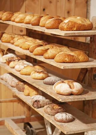 Variaty of fresh bread in bakery photo