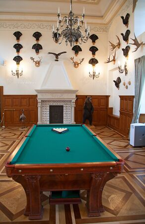 gun room: Hunting trophy room in the medieval castle