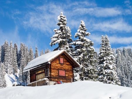 Winter in de Zwitserse Alpen, Zwitserland