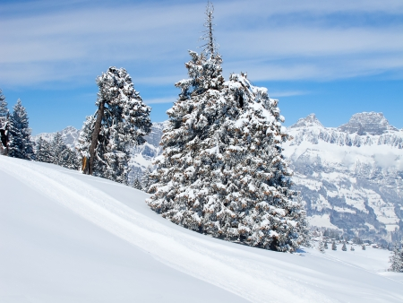 Winter in the swiss alps (Flumserberg, St.Gallen, Switzerland) photo