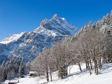 Winter in the swiss alps, Switzerland photo