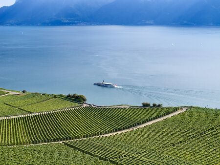 Vineyards of the Lavaux region over lake Leman (lake of Geneva) photo