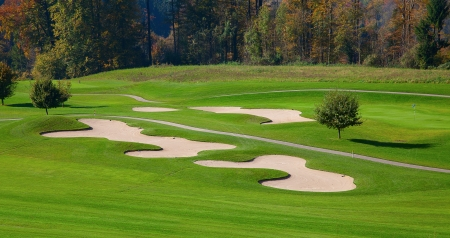 green grass of the golf course surrounded by autumnal forest Stok Fotoğraf