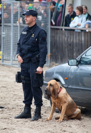 SANKT GALLEN, SWITZERLAND - OCTOBER 22: Police demonstrates dog training on the agricultural show 'Olma' on October 22, 2011 in Sankt Gallen, Switzerland