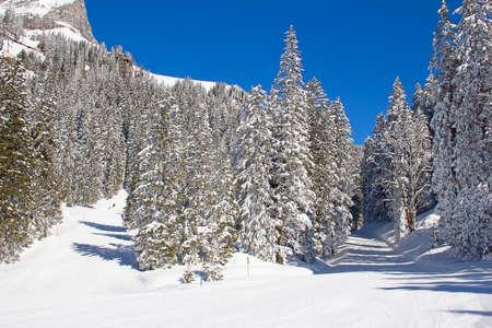 glarus: Winter in the swiss alps (Braunwald, Glarus, Switzerland)