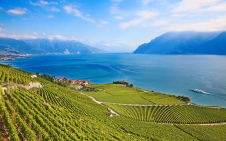 Wijngaarden van de regio Lavaux over het meer Leman (meer van Genève)