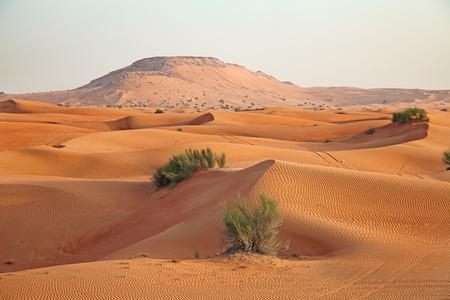 """붉은 모래 두바이, 아랍 에미리트 근처 """"아라비아 사막"""""""