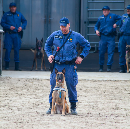SANKT GALLEN, SWITZERLAND - OCTOBER 22: Police demonstrates dog training on the agricultural show Olma on October 22, 2011 in Sankt Gallen, Switzerland
