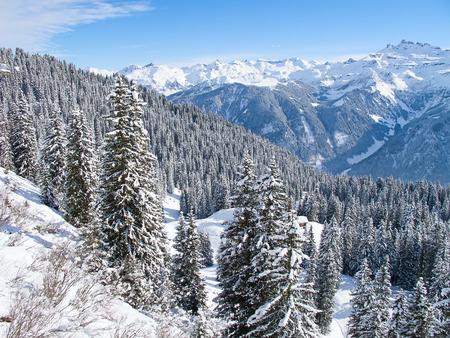 Typical swiss winter season landscape. January 2011, Switzerland. photo