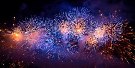 fuegos artificiales: Fuegos artificiales en el cielo oscuro