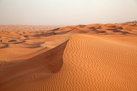 Red sand Arabian desert near Dubai, United Arab Emirates