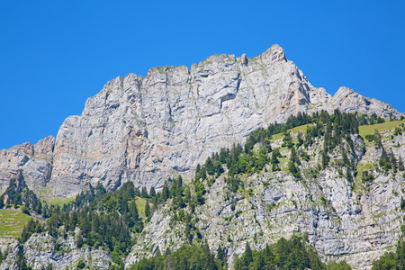 toggenburg: Summer landscape in the Walensee region (Churfirsten mountain range in Swiss Alps)