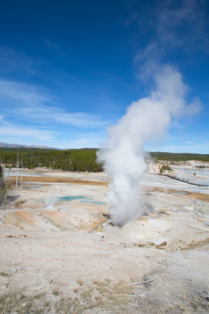 Norris geyser basin in the Yellowstone National park, USA Stock Photo