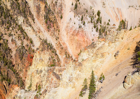 lower yellowstone falls: Colorful walls of the canyon in the Yellowstone National Park, Wyoming, USA