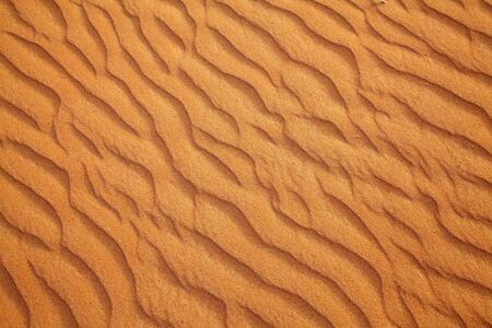 Red sand Arabian desert near Dubai, United Arab Emirates