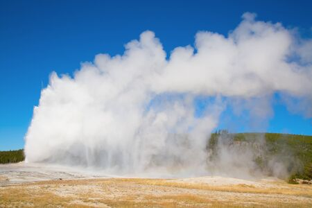 eruption: Old Faithful geyser eruption in the Yellowstone national park, USA