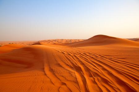 """Roter Sand """"Arabische Wüste"""" in der Nähe von Dubai, Vereinigte Arabische Emirate Standard-Bild - 81492779"""