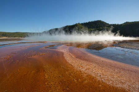 Lower geyser basin in the Yellowstone National park, USA Stock Photo