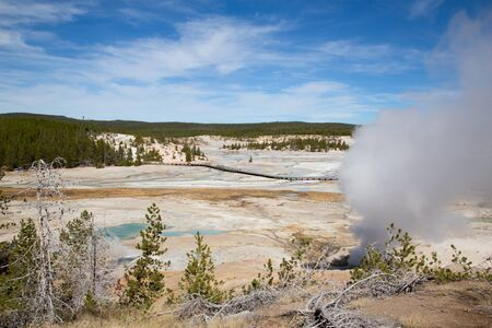 Norris geyser basin in the Yellowstone National park, USA 免版税图像
