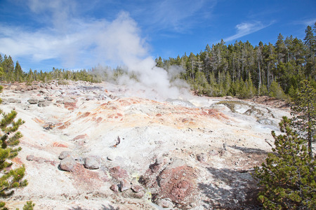 Norris geyser basin in the Yellowstone National park, USA 写真素材