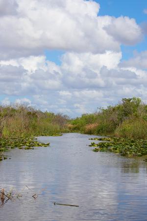 Everglades National Park, Florida, USA Banque d'images - 119246887
