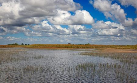 Everglades-Nationalpark, Florida, USA