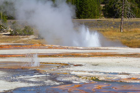 Black sands geyser basin in the Yellowstone National park, USA Imagens