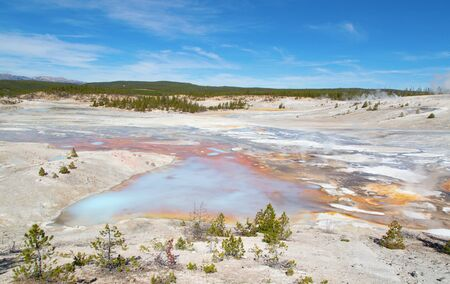 Norris geyser basin in the Yellowstone National park, USA 스톡 콘텐츠 - 132114086
