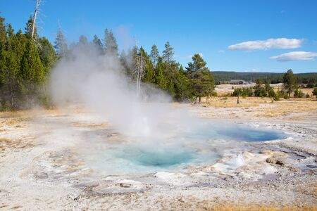 Upper geyser basin in the Yellowstone National park, USA