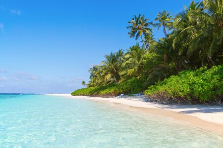 Small island in the Maldives covered by palms and surrounded by turquoise blue waters with with beautiful corals and animals, perfect escape from the cold winter 版權商用圖片