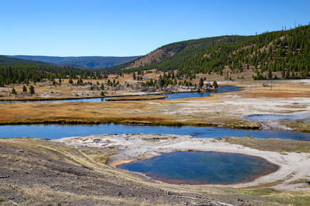 Lower geyser basin in the Yellowstone National park, USA 写真素材