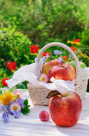 Red apples, flowers and basket on white garden table in sunny summer day photo