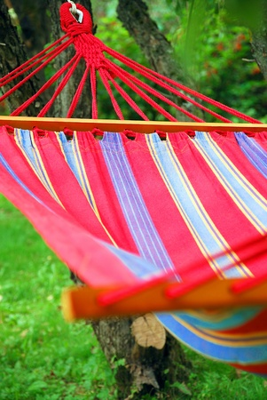 hammock: Hammock in the garden Stock Photo