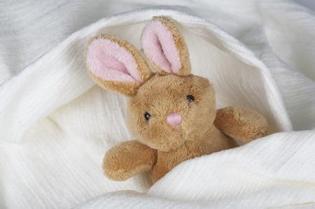 stuffed: stuffed rabbit Stock Photo