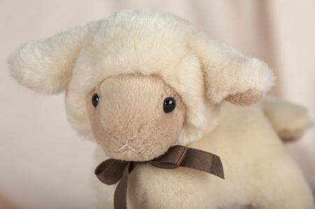 stuffed: stuffed lamb