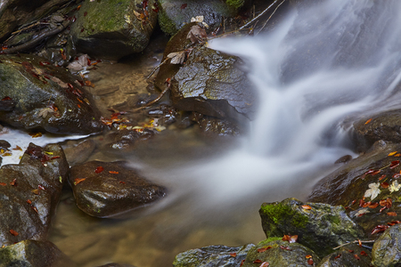 Waterfall and rivlet in Erlenbacher Tobel Switzerland